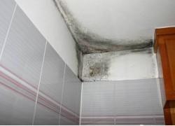 Schimmel door condens in een badkamer